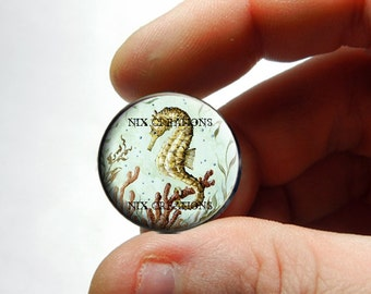 Seahorse Glass Cab Cabochon - Design 3  - for Jewelry and Pendant Making