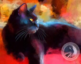 Day Dreamer Black Cat Print - Limited Edition Black Cat Art Print - Colourful Kitty Print