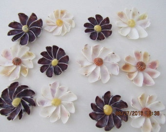 Seashell Flowers,  Colorful Couquina Shell Flowers,  Scrapbook Supplies,  Embellishments,  12 Shell Flowers