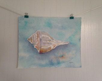 Original Seashell Watercolor Painting, Conch Shell Watercolor, Whelk Shell Painting, 8 x 10 inches, Beach Art, Cottage Decor