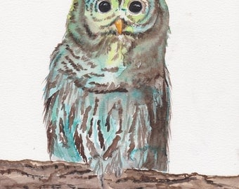 Owl in Green Original Watercolor
