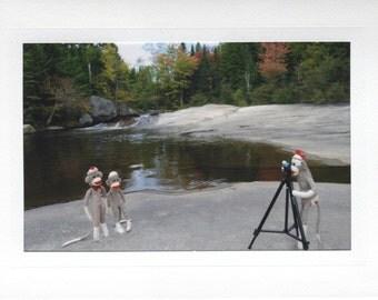 Photo Shoot sock monkey card