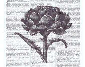 Artichoke.veggie,vegan.vegetarian.cook.chef.kitchen art.Botanic.altered Antique Book Page Print.birthday,Gift,Home Deco,french.mom.cottage