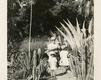 vintage photo 1920 Gran with Children in Beautiful Cactus Garden