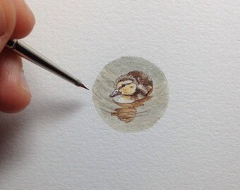 FRAMED Miniature Painting of a wood duck by Brooke Rothshank