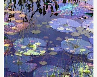 On Sale Fine Art Print, Giclee Archival Print, Photomontage, Collage, Painted Photographs, Lily Pads