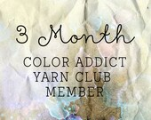 3 MONTHS - JULY - SEPTEMBER -  Color Addict Yarn Club Membership - Yarn Club