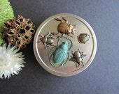 Bug Tin, Bug Box, Bee Jewelry Box, Scarab Box, Ladybug Gift Tin, Trinket Box, Metal Tin, Round Pill Box, Woodland Bugs, Storage Tin