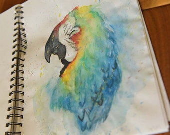 Original water color Macaw