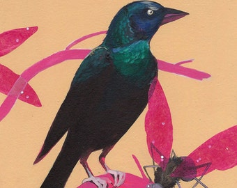 "Common Grackle - bird art print, 6"" x 6""."