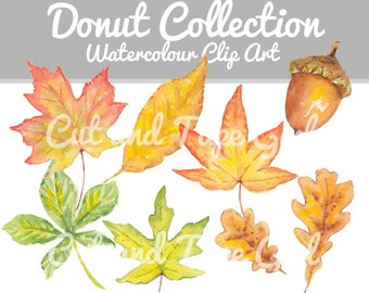 Leaf Watercolor Clip Art - Autumn Leaves Clipart, Watercolor Clip Art, Maple Leaf, Hand Drawn, Acorn Watercolour