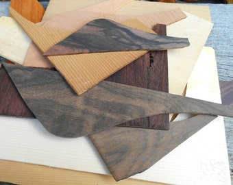 Box of Wood for woodworking, jewelry supplies, lazar die cut craft projects, ornaments, Exotic Wood scraps