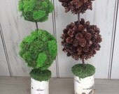 Woodland topiary, choose green moss or Spruce cones both with birch log base. For your nature themed wedding or home.