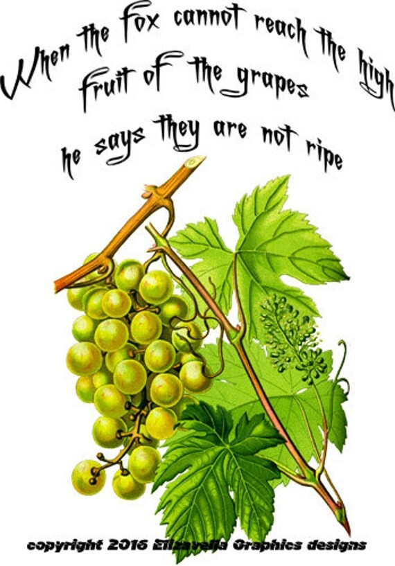 green grapes wise words fruit Digital image download graphics Wise Quotes failure quotes food gardening art printables clipart png clip art