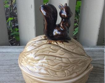 Bright Eyed Bushy Tailed Squirrel  on a Walnut Covered  Dish