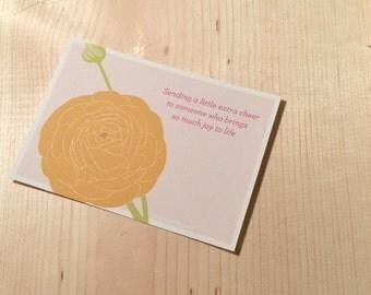 Ranunculus sweet nothings