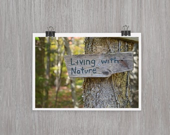 Living with Nature Stowe Vermont - 4 x 6 photograph