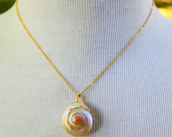 REAL Sea Shell Necklace Gold Dipped Electroplated Vintage Dainty