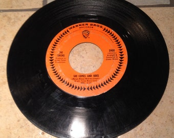 Portrait of my Love/She Comes and Goes by The Tokens Record by Warner Brothers Records