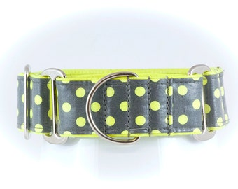 Citrus Pop: Waterproof Martingale Collar, Dog Collar, No Slip Collar, Greyhound Collar