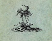 Flowering Heart - Antique Style Clear Stamp
