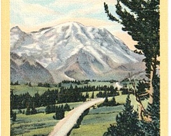 Vintage Washington State Postcard - Highway leading to Sunrise, Mount Rainier National Park (Unused)