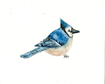 BLUEJAY Original watercolor painting 10x8inch