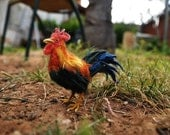 Needle felted Bird . Rooster.  Needle felt by Daria Lvovsky