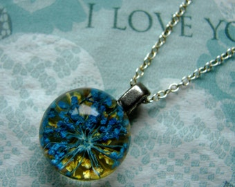 REAL Queen Anne's Lace Ball - Blue Yellow Flower Necklace - Crystal Clear Globe Pendant - Sterling Silver Chain - Choice of Chain Length