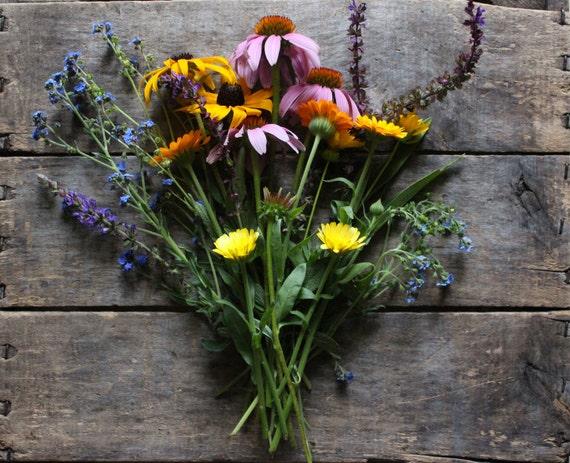 Wildflower Seed Mixture // organic flower seeds // one seed packet // heirloom wildflower seeds from our farm // flower garden
