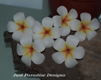 Hair Pins - Hawaiin Franipani- Set of 6 -  White