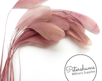 Pack of 12 Loose Stripped Coque Feather for Millinery & Fascinators - Mauve
