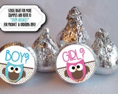 3/4 Inch Candy Stickers, Candy Labels, Baby Gender Reveal Party, Baby Shower, Pink & Blue Baby Owls, Sheet of 108 Stickers