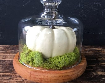 Vintage Glass Cloche with Wood Base