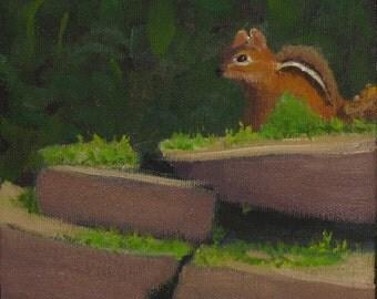 "Oil painting, wildlife art, chipmunk , 6""x6"" gallery wrap canvas"