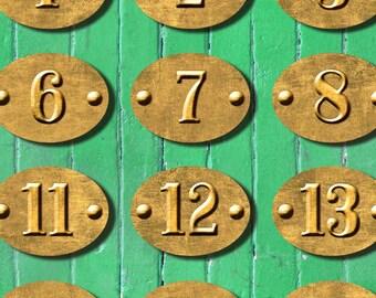 Number labels brass 30x40 ovals digital collage sheet Instant Download printable n083
