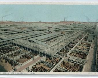 Stock Yards Kansas City Missouri 1910c Fred Harvey Phostint postcard