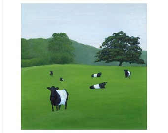 Six Belted Galloways on a Hill 6 x 6 Print by SBMathieu