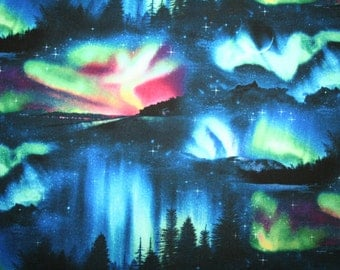 NORTHERN LIGHTS FABRIC ~ Beauty of the Northern Sky from Elizabeth's Studio ~ Aurora Borealis Landscape Fabric