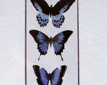 """Hand Crafted 3D Layered Card, Blank for any Occasion (1984) """"Blue Butterflies"""", Birthday Card, Papillion, Blue Card, Nature Card, Butterfly"""
