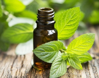 Peppermint Essential Oil, 15 ml