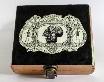Anatomical Skull and Skeletons Cigar Box Purse Container Leather and Wood OOAK