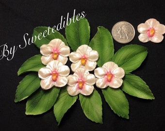 Ready to Go Now Gumpaste Edible Flower Orchid (12 in a set)