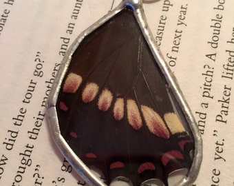 Real Butterfly jewelry, butterfly wing Necklace, handmade real butterly jewelry, real butterfly pendant