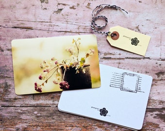 Flower Photography Notecard Set, Carte Postale, SnailMail Postcards, Photography Notecards, Postcrossing, Penpal, Fine Art Flower Photos