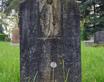 Sophia Purkins new original cemetery photography
