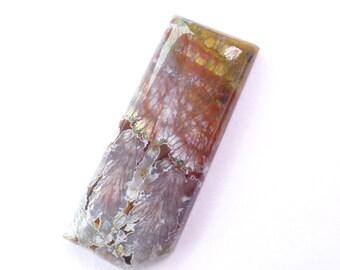Plume Agate Designer Cabochon. Canadian River, Texas Plume Agate. Gorgeous Colors & Pattern. Nice Polish. 1 pc. 23 cts. 14x37x4 mm  (PJ430)