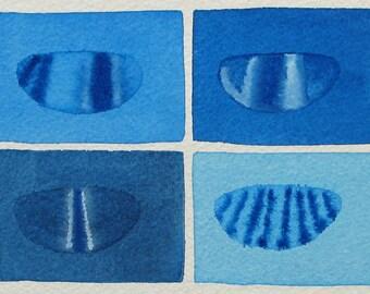 Drosophila Embryos 2  - original watercolor painting -  Genetics