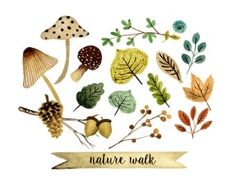 Fall clipart, watercolor fall clipart, mushroom clipart, forest clipart, nature clipart, hand painted fall clipart,