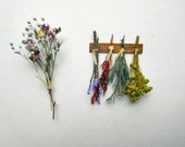 Unique Rack of Dried Miniature Herbs for Dollhouse, Diorama or Vignette